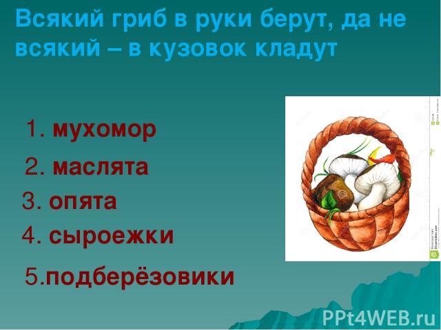 1. мухомор 2. маслята 3. опята 4. сыроежки 5.подберёзовики Всякий гриб в руки берут, да не всякий – в кузовок кладут