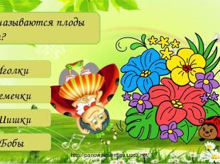 Как называются плоды сосны? Иголки Семечки Шишки Бобы http://panowavalentina.uco