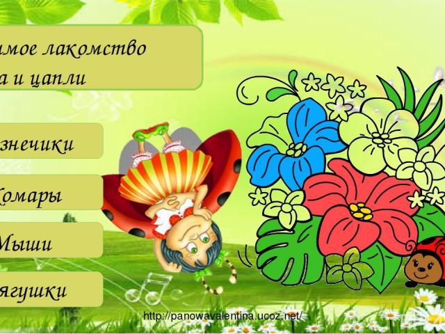 Любимое лакомство аиста и цапли Лягушки Кузнечики Комары Мыши http://panowavalentina.ucoz.net/