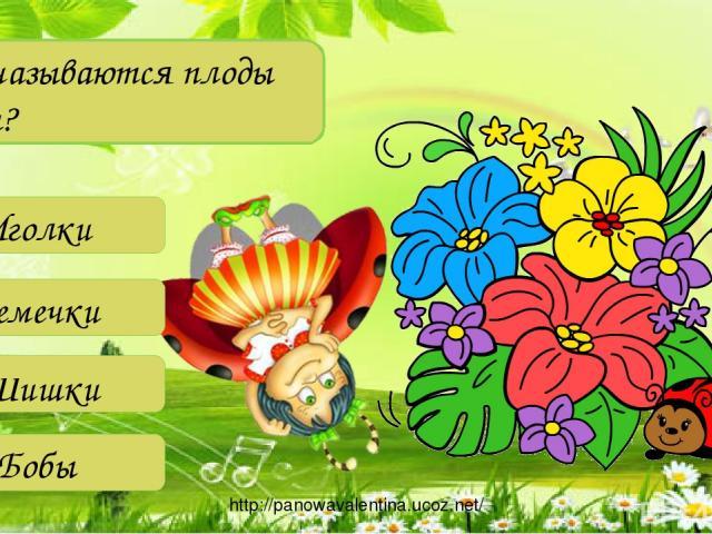 Как называются плоды сосны? Иголки Семечки Шишки Бобы http://panowavalentina.ucoz.net/