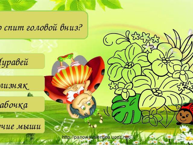 Кто спит головой вниз? Летучие мыши Cлизняк Бабочка Муравей http://panowavalentina.ucoz.net/