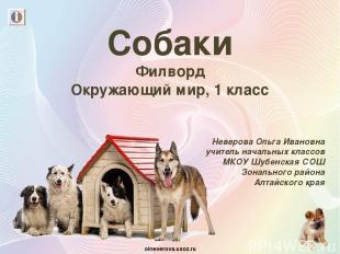 Собаки Филворд Окружающий мир, 1 класс Неверова Ольга Ивановна учитель начальных