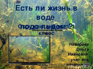 Окунь oineverova.usoz.ru