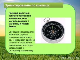 Ориентирование по компасу: Принцип действия компаса основан на взаимодействии ма