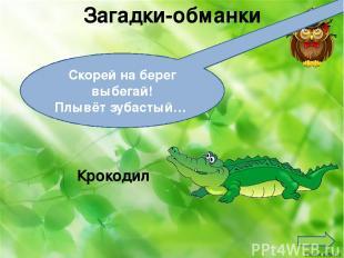 Загадки-обманки Скорей на берег выбегай! Плывёт зубастый… Крокодил Ekaterina0504