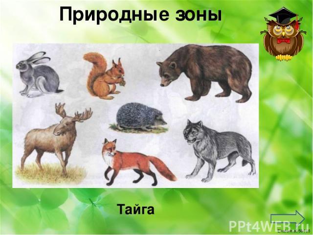 Степь Природные зоны Ekaterina050466
