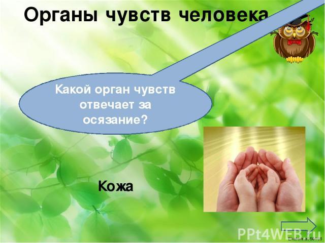 Реки России Москва Какая река протекает в городе Москва Ekaterina050466