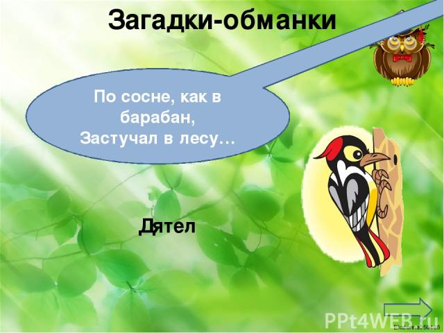 Реки России Селенга Самый большой приток озера Байкал Ekaterina050466