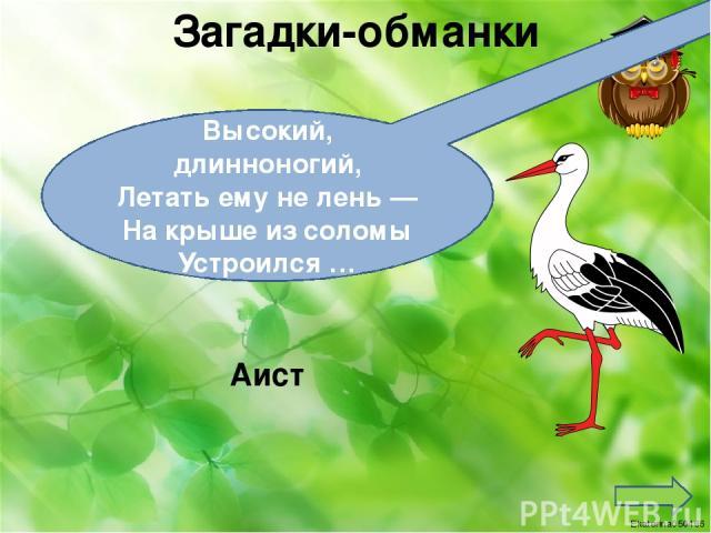 Загадки-обманки Высокий, длинноногий, Летать ему не лень — На крыше из соломы Устроился … Аист Ekaterina050466