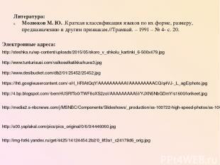 Литература: Молюков М. Ю. .Краткая классификация языков по их форме, размеру, пр