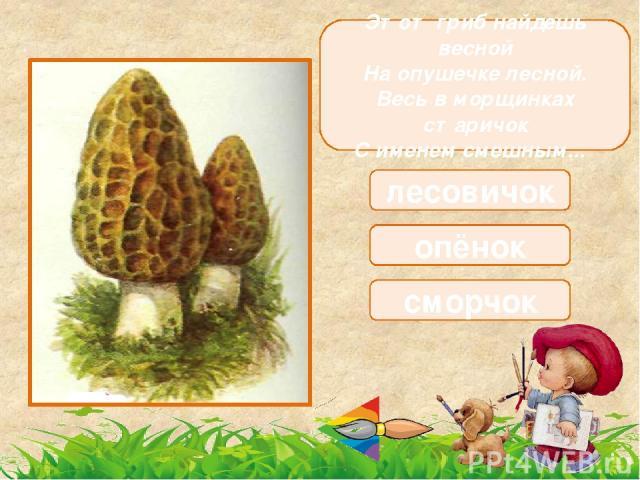 Этот гриб почти домашний, Он растет в подвале нашем, Вкусный из него бульон, Это белый … шампиньон рыжик боровик