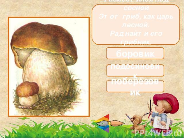 В красной шляпе под осиной К шляпе жёлтый лист прилип… Полезай скорей в корзину Ты съедобный, вкусный гриб. подосиновик мухомор поберёзовик