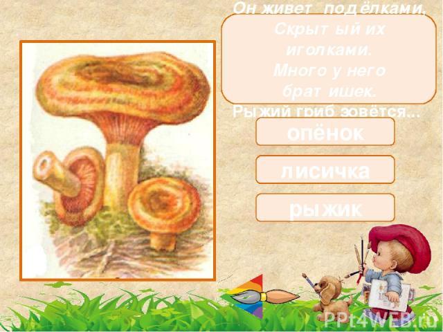 Этот миленький грибок Выбрал тихий уголок. Ножичком его ты срежь-ка, Ведь съедобна… сыроежка волнушка лисичка