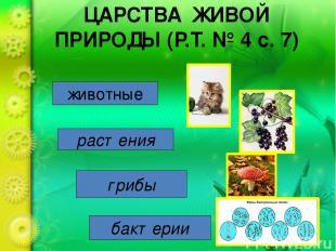 ЦАРСТВА ЖИВОЙ ПРИРОДЫ (Р.Т. № 4 с. 7) животные растения грибы бактерии