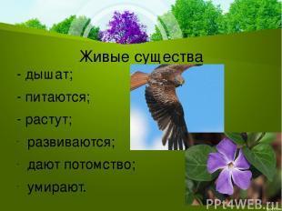 Живые существа - дышат; - питаются; - растут; развиваются; дают потомство; умира