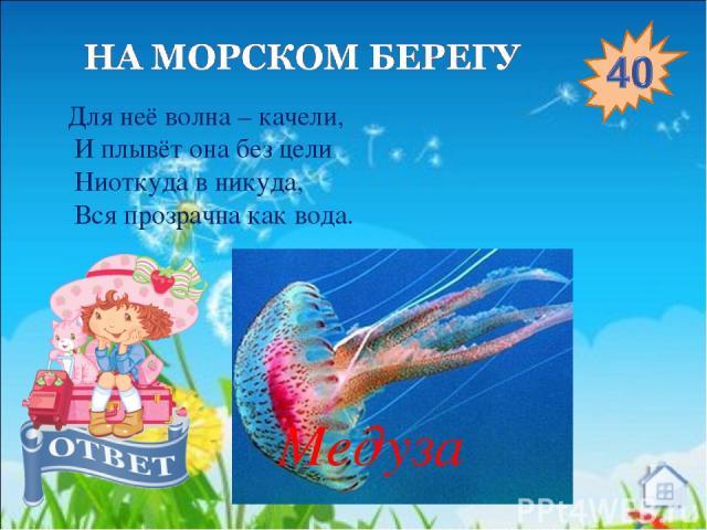 Для неё волна – качели,  И плывёт она без цели Ниоткуда в никуда, Вся прозрачна как вода. Медуза