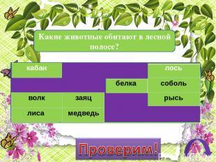 Дорогой друг! Предлагаем тебе проверить твои знания по теме «Леса России» Инстру