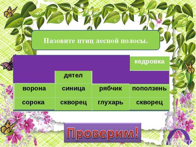 Какие из перечисленных растений растут в тайге? вишня кедр ель ольха пихта сосна осина лиственница абрикос берёза малина тополь орех клён ежевика дуб