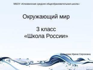 Окружающий мир 3 класс «Школа России» МБОУ «Клюквинская средняя общеобразователь