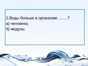 2.Воды больше в организме …….? а) человека; б) медузы.