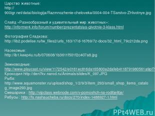 Царство животные: http://900igr.net/datai/biologija/Razmnozhenie-cheloveka/0004-