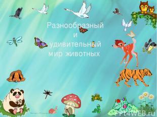 Разнообразный и удивительный мир животных