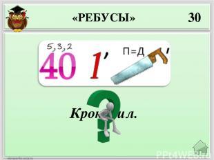 Тушканчик. 50 «РЕБУСЫ»