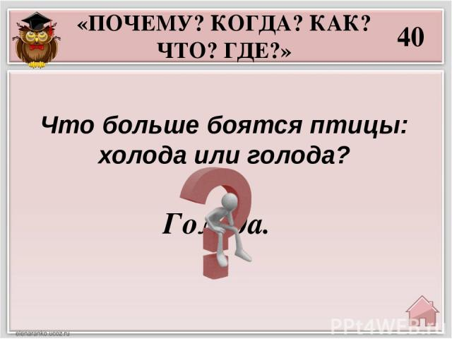 «РЕБУСЫ» 10 Антилопа.