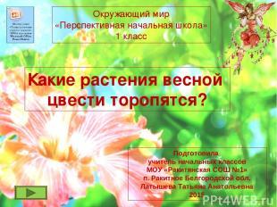 Какие растения весной цвести торопятся? Окружающий мир «Перспективная начальная
