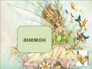 анемон