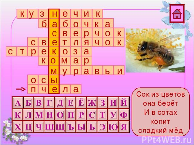 Сок из цветов она берёт И в сотах копит сладкий мёд Подсказка п ч е л а