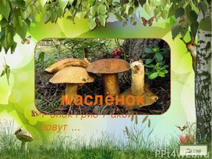 Шоколадно-бурый гриб, К скользкой шляпке лист прилип. Воротник ажурный тонок Г