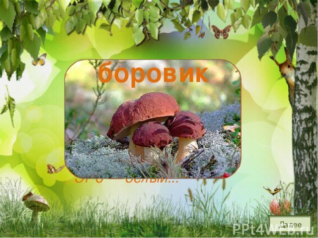 Разместился под сосной Этот гриб, как царь лесной. Рад найти его грибник. Это — белый... боровик Далее