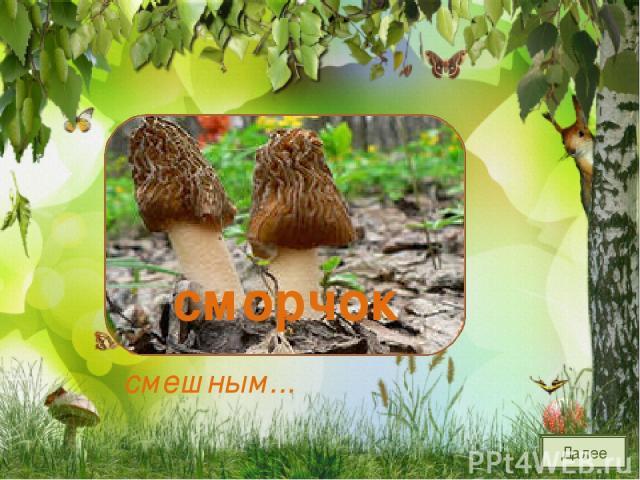 Этот гриб найдешь весной На опушечке лесной. Весь в морщинках старичок С именем смешным... сморчок Далее