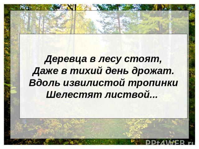 Деревца в лесу стоят, Даже в тихий день дрожат. Вдоль извилистой тропинки Шелестят листвой...