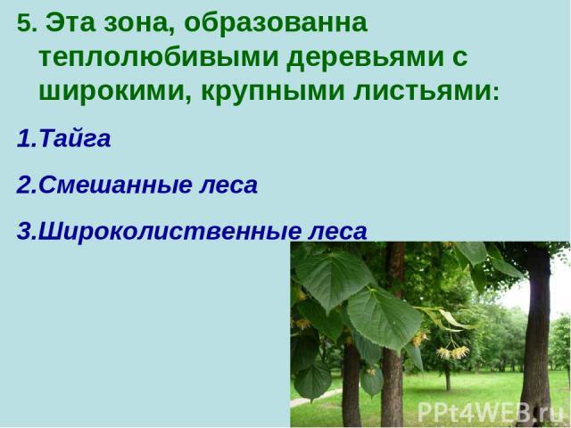 5. Эта зона, образованна теплолюбивыми деревьями с широкими, крупными листьями: Тайга Смешанные леса Широколиственные леса