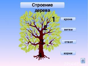 6+4 3+7 5+5 9+1 5+4 7+2 8+2 Помоги ежику собрать спелые яблоки так, чтобы сумма