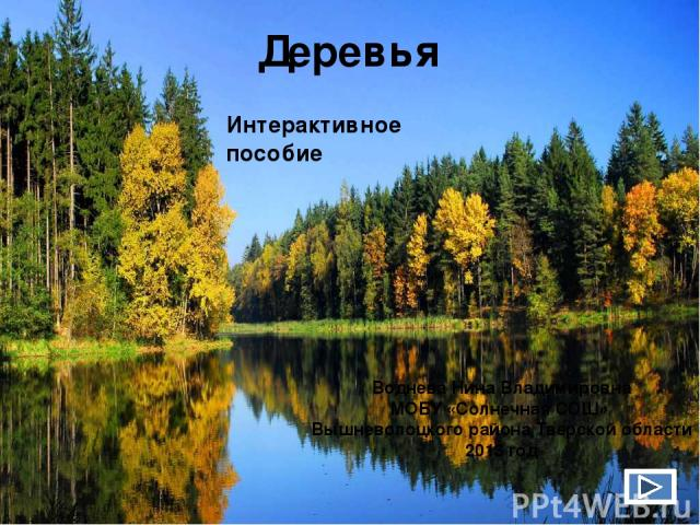 крона 1 2 ветви ствол корни Строение дерева 4 3