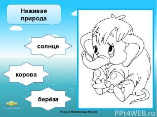 берёза солнце корова Неживая природа ©Ольга Михайловна Носова