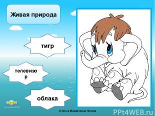 облака тигр телевизор Живая природа ©Ольга Михайловна Носова