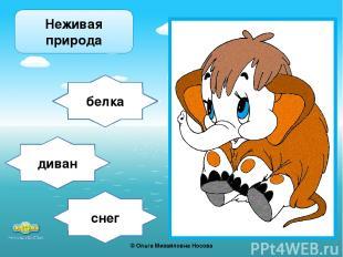 снег белка диван Неживая природа ©Ольга Михайловна Носова