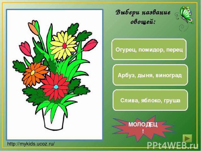 Арбуз, дыня, виноград Огурец, помидор, перец Слива, яблоко, груша МОЛОДЕЦ! Выбери название овощей: http://mykids.ucoz.ru/