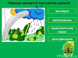 Как ты можешь помочь в охране лесов? Бороться с лесорубами Уничтожать гусениц Бе