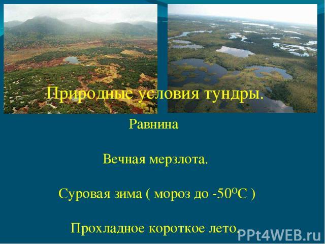 Равнина Вечная мерзлота. Суровая зима ( мороз до -50ОС ) Прохладное короткое лето. Природные условия тундры.