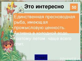 Удивительное рядом Мамаев курган и Родина-мать в Волгограде 30 Категория Ваш отв