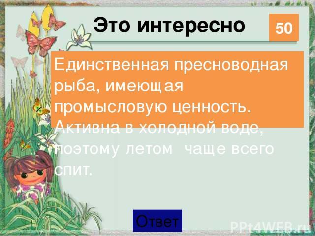 Удивительное рядом Мамаев курган и Родина-мать в Волгограде 30 Категория Ваш ответ