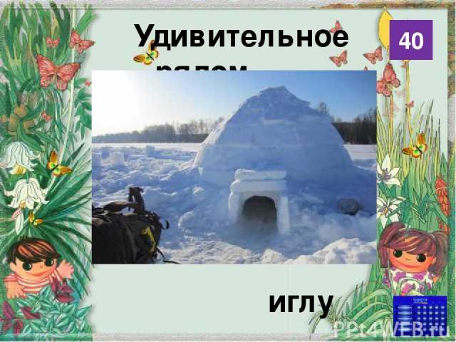 Использованные источники http://www.animalsglobe.ru/wp-content/uploads/2012/02/%D1%85%D0%B0%D0%BC%D0%B5%D0%BB% D0%B5%D0%BE%D0%BD-13.jpg хамелеон http://mariuver.files.wordpress.com/2012/03/eskim_igla.jpg иглу http://shamora.info/up2/photo_image/cach…