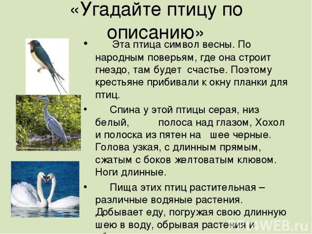 «Угадайте птицу по описанию» Эта птица символ весны. По народным поверьям, где она строит гнездо, там будет счастье. Поэтому крестьяне прибивали к окну планки для птиц. Спина у этой птицы серая, низ белый, полоса над глазом, Хохол и полоска из пятен…