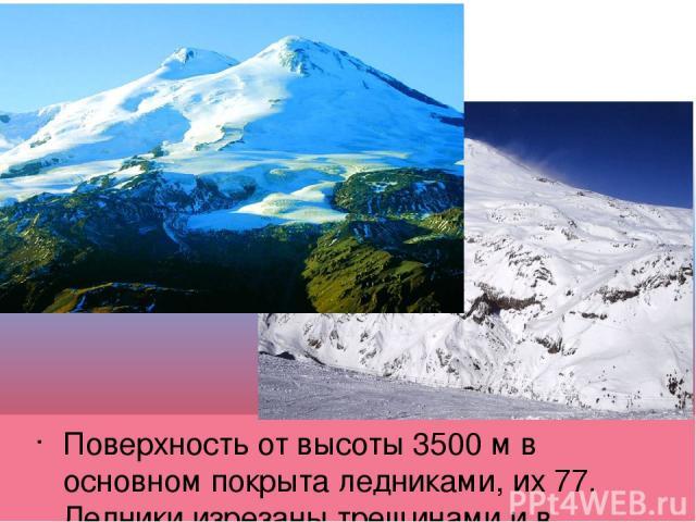 Поверхность от высоты 3500 м в основном покрыта ледниками, их 77. Ледники изрезаны трещинами и в нижней части обрываются ледопадами.
