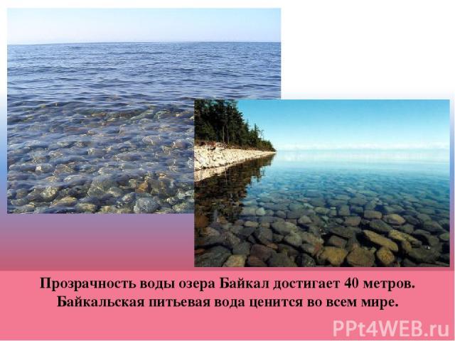 Прозрачность воды озера Байкал достигает 40 метров. Байкальская питьевая вода ценится во всем мире.